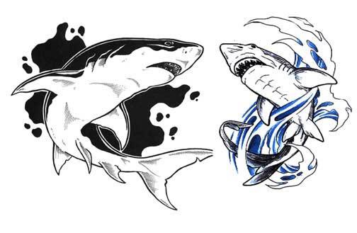 Тату акулы эскизы и значение